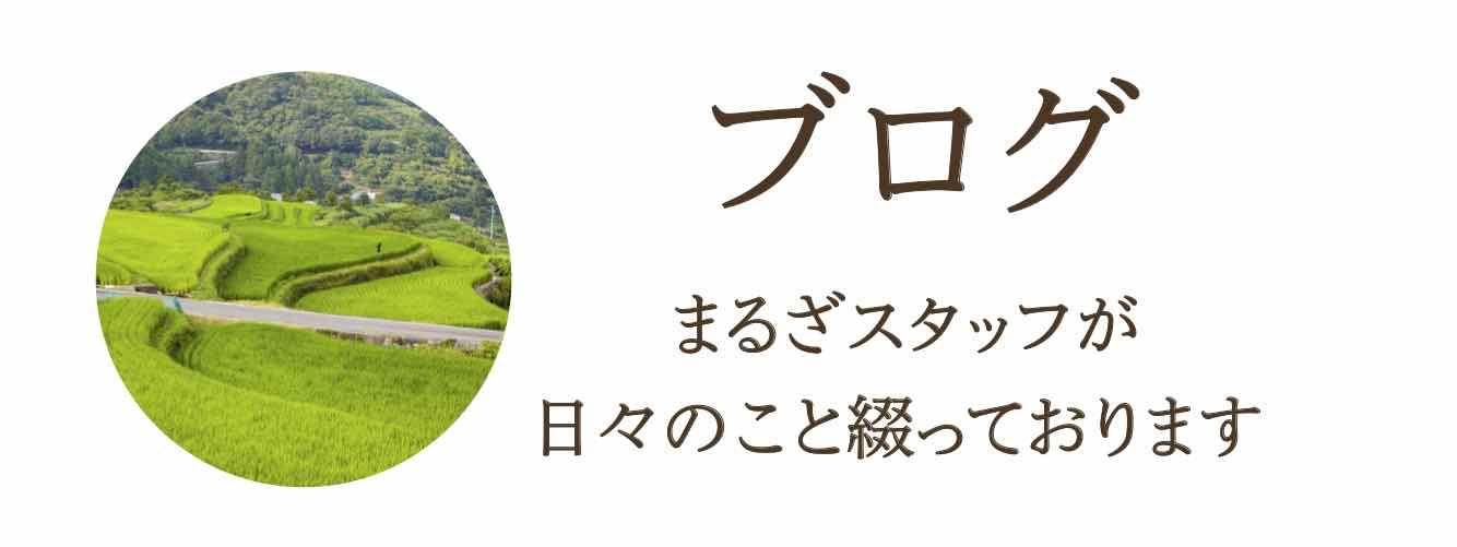 """""""まるざブログ"""